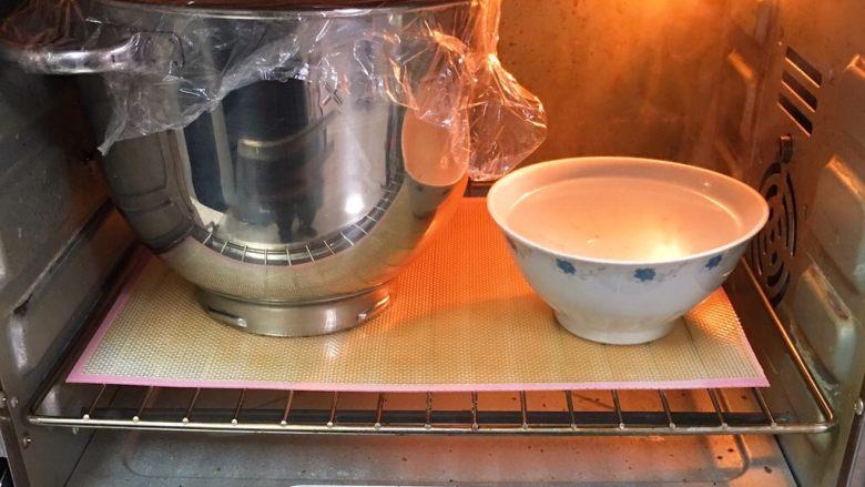 葡萄吐司面包,烤箱发酵档,旁边放一碗热水,发酵60分钟。