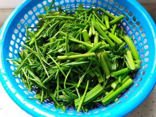 里脊肉香干水芹菜,水芹菜洗净之后切成合适的段,沥干水分