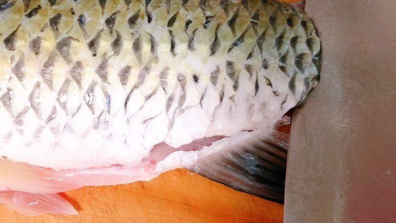 酸菜鱼,把鱼尾巴剁了,从尾巴那下刀,往上片把鱼肉跟骨头分开
