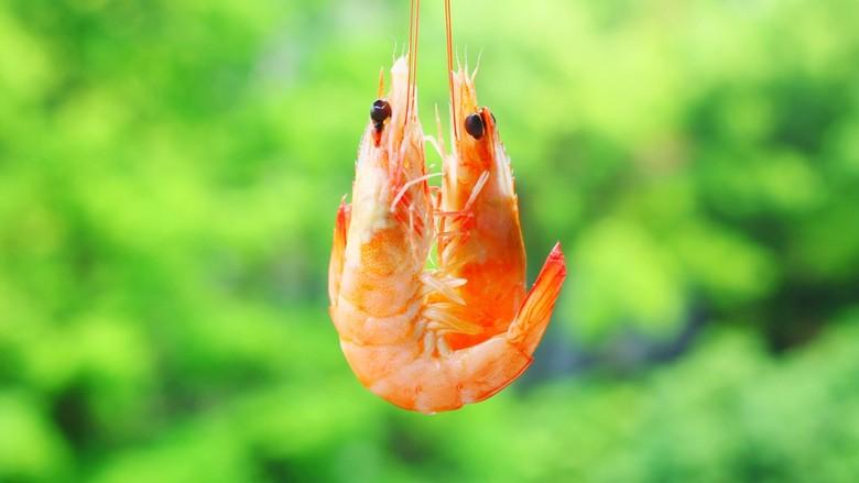 鲜嫩无比的白灼虾,漂亮。
