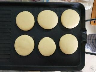 养胃山药饼,电饼铛不刷油,不刷油,干烙。最小火烙。一受热饼还会长高,变厚。