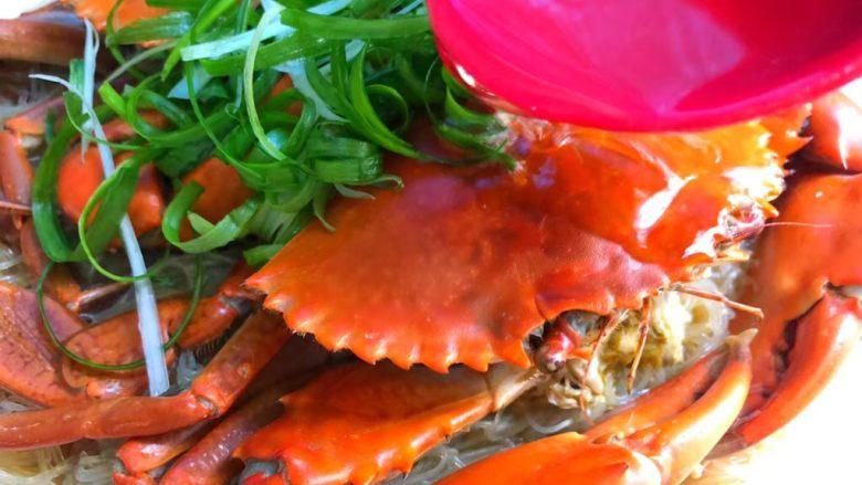 粉丝蒸青蟹,青蟹蒸好取出,放上葱丝,锅里放入适量油,烧至9成热,把热油浇到青蟹和葱丝上即可。