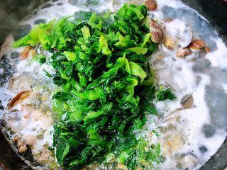 小白菜蚬子汤,放入小白菜拌匀