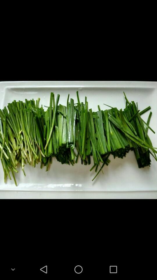 韭菜炒鸡肝,切成段备用