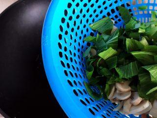 青菜口蘑虾干汤,待锅内油七分热时下小青菜和口蘑