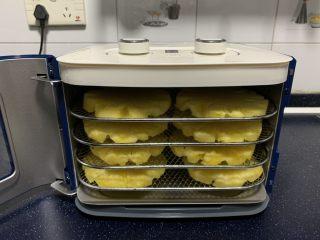小零食 菠萝花,将烤网放入果干机中。