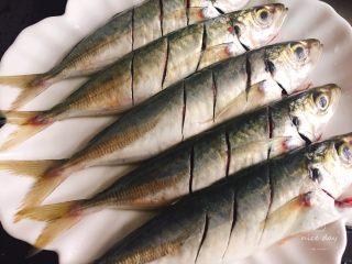 孜然鳀鱼,将鳀鱼处理好 ,用刀在鱼表面划上两三刀