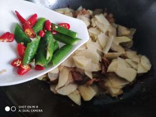 家常五花肉炒土豆,放入青红辣椒块。