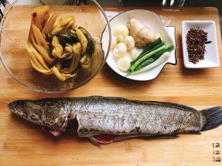酸菜鱼,黑鱼洗净