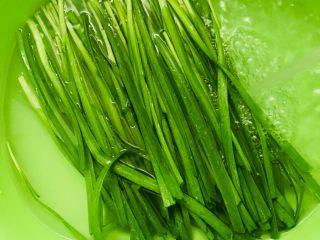 薄皮素包子,韭菜摘去黄叶用清水冲洗干净