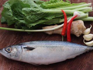 啤酒焖鲐鱼小白菜,首先备齐所有的食材。