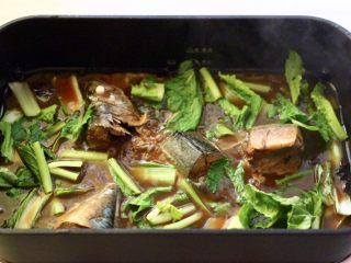 啤酒焖鲐鱼小白菜,先加入小白菜帮继续炖煮。