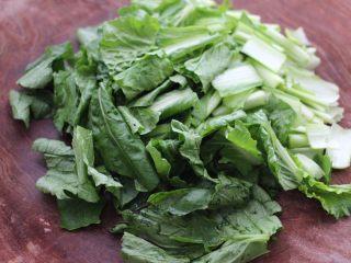 啤酒焖鲐鱼小白菜,小白菜用清水浸泡一会儿后,洗净用刀切成段。