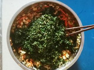 野菜豆腐包子,汆水后的野菜切碎  一同放入馅料盆里 放入芝麻油拌匀备用