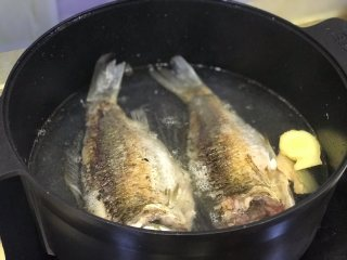 鲫鱼汤,锅内油倒掉,放入足量水(大概2大碗),加入姜片和鲫鱼。