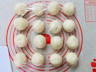 蜜豆手撕包,滚圆盖保鲜膜醒发15分钟。