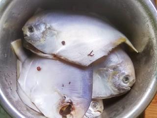 酱焖银鲳鱼,银鲳鱼洗净,放入花椒,料酒腌制两小时