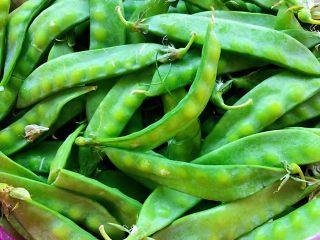 蒜蓉荷兰豆,刚采摘回来新鲜的荷兰豆真美摘去两端带筋部位后洗净