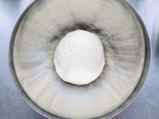 中种谷物吐司,中种材料依次添加,用手混合成团(使用面包机或厨师机也可以)。温度26°—28°,盖上保鲜膜,发酵1.5-2小时。