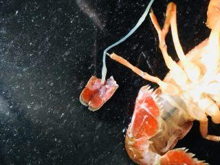 蒜蓉小龙虾,龙虾刷干净后用手把虾线弄出来如图。这个一定要拿出来,因为它很脏,不能食用。