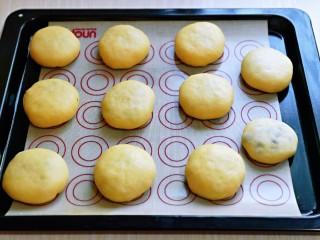 蜜豆喜饼~香甜松软,依次做完,放在垫好油纸的烤盘中,并间隔距离。