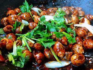 香辣花螺,撒上葱花和香菜提鲜即可出锅享用