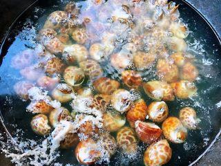 香辣花螺,花螺不能煮至时间过长只要开锅即可关火即可