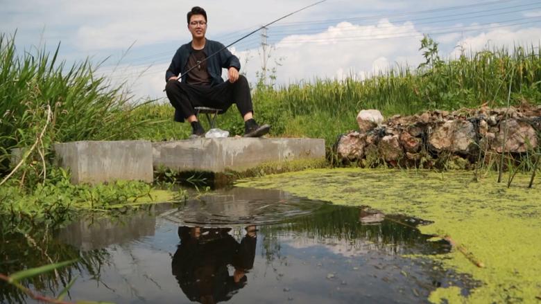 在大理古城吃狗粮,在洱海湖畔爆龙虾
