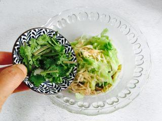 野生淡干虾皮拌卷心菜,放入香菜
