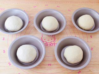 猪排汉堡包,将发酵好的面团取出排气揉匀,再分成均匀大小的面团,揉圆后稍加按扁放入学厨的汉堡模具中,进行二次发酵至两倍大左右