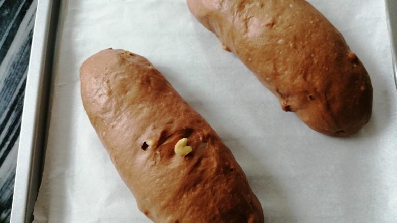 巧克力坚果面包,面包胚发酵有差不多两倍大,发酵温度不同,发酵时间不同