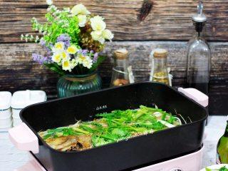 鲈鱼焖豆芽,成品图