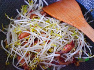 海兔绿豆芽小炒,放入洗净的绿豆芽,继续大火翻炒片刻。