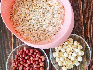 什么都来点的台式素粽,糯米混合五谷米(依个人喜好,小C的有糙米、高梁米、燕麦米)泡水静置3小时后沥干。花生泡水静置5小时沥干、莲子泡水静置4小时沥干。