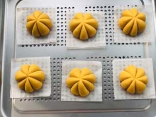 宝宝辅食:南瓜馒头,全部制作好以后需要发酵,大约30度左右发到两倍大即可。本来是准备用蒸烤箱蒸,但是有个零部件突然没找到,所以后来还是选择用了笼屉。