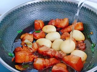 红烧肉焖蛋,加入纯净水,没过五花肉为佳。