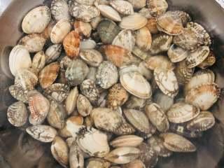 爆炒花甲,花甲买回来以后要放在水中吐水清洗,水里可以加适量的盐,让花甲更好的吐沙。