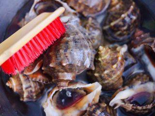 原味海螺,再用刷子把海螺一个个刷洗干净后。