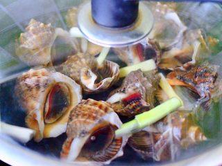 原味海螺,盖上锅盖大火烧开后,立马转小火慢慢煮15分钟后,关火焖5分钟即可。