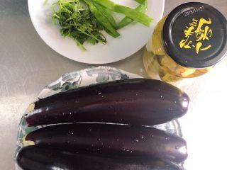蒜香蒸茄子(泡椒蒜泥版),准备好食材。长茄子、泡椒、葱蒜、香菜。