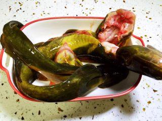 牛尾巴鱼白菜豆腐泡汤,牛尾巴鱼去鳃、去内脏,洗净