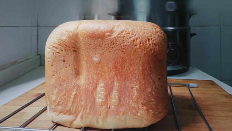 野杏肉面包