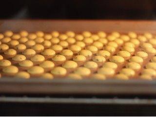 黑芝麻蛋黄溶豆,提前预热好烤箱,挤完以后送入烤箱烘烤。100度,约烤18分钟左右