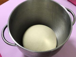 洋葱牛肉包子,盖上保鲜膜发酵至2倍大。