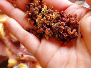 茶树菇炖翻鸭,加一把花椒烧开