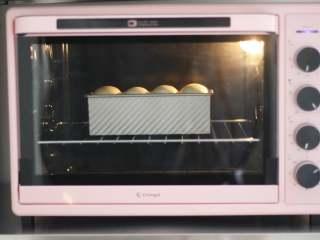 中种奶油吐司,提前预热好烤箱,175度烤35分钟左右。因为是制作的不带盖吐司,所以需要在烤的中途,吐司顶部上色时,盖上锡纸,避免顶部颜色过深烤糊。