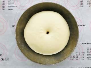 汉堡胚,发酵好的面团用手指粘一些面粉戳面团的中心处,面团不会回缩就是发酵好了。