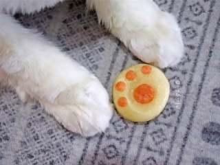 猫爪馒头,给猫咪看看它的小爪爪,哈哈