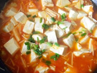 茄汁金针菇炖豆腐,放一点薄薄的水淀粉勾芡,放香葱。