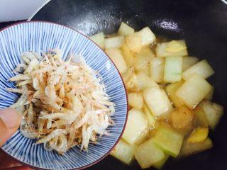 蚝油虾皮炒冬瓜,倒入淡干虾皮翻炒片刻